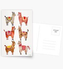 Alpakas Postkarten