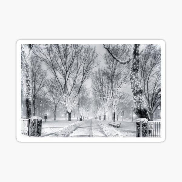 Snow's path down Comm Ave Sticker