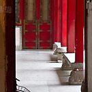 Through the Door by Tom Vaughan