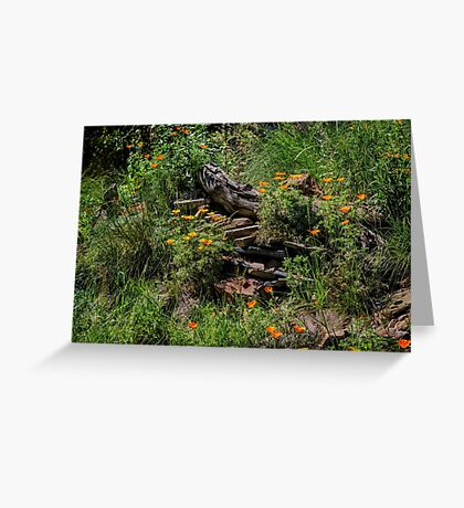 California native garden Greeting Card