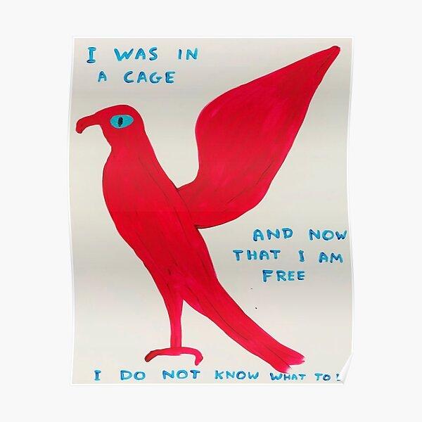 red bird art Poster