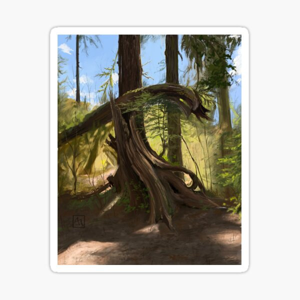 Olympic National Park Forest Sticker