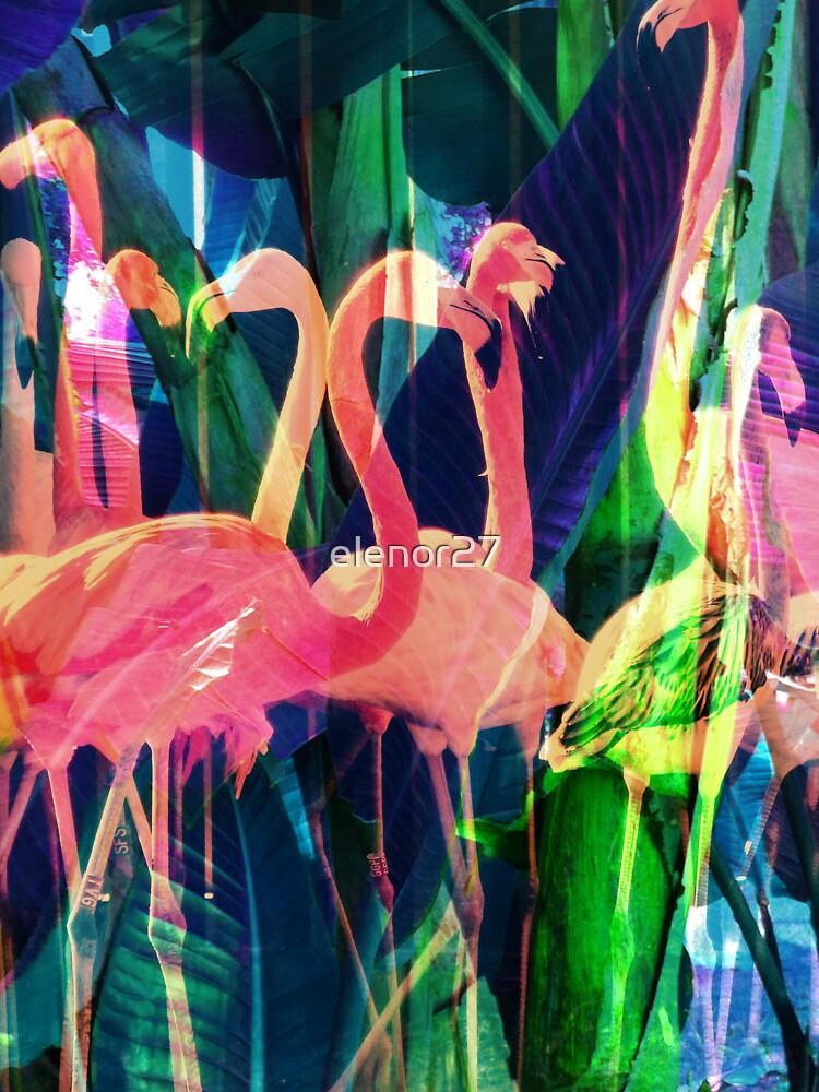 Flamingo Dance by elenor27