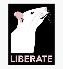 Liberate (Rat) Photographic Print