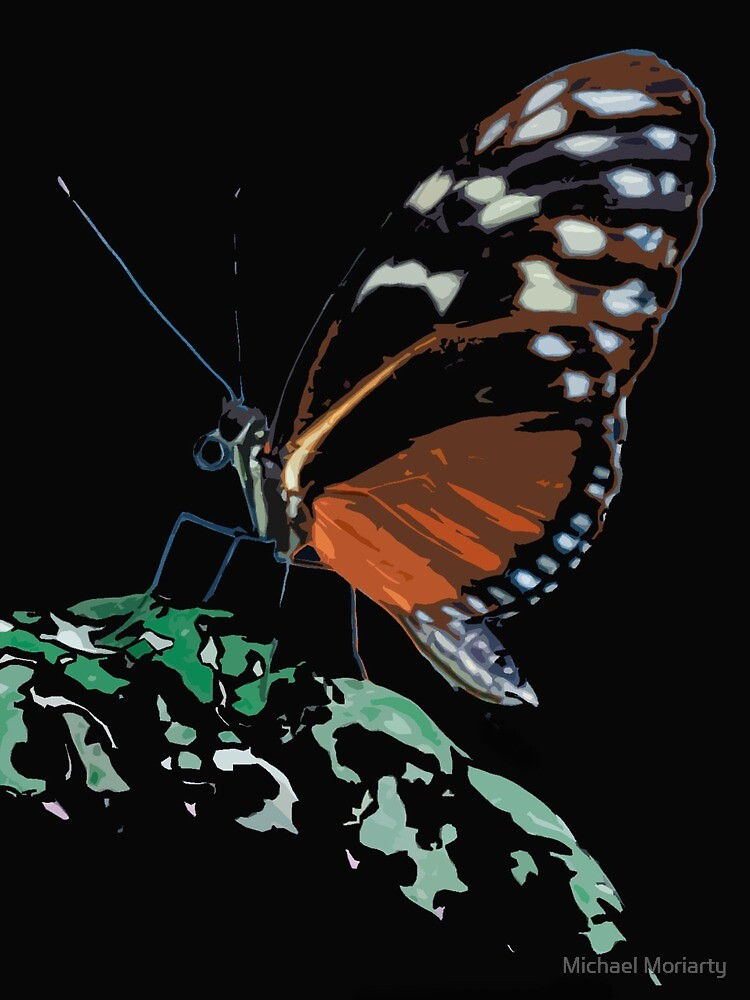 Butterfly on Green Leaf by Michael Moriarty
