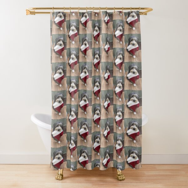 Bearded Collie - Christmas is Coming!  Shower Curtain