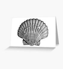 Black and White Seashell Greeting Card