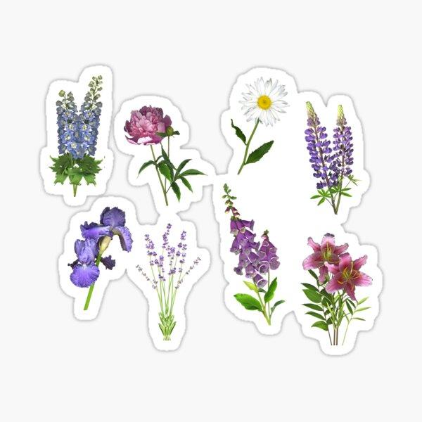June Garden Favorites Sticker