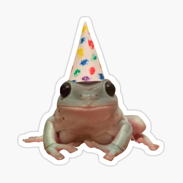frog with a birthday hat Sticker