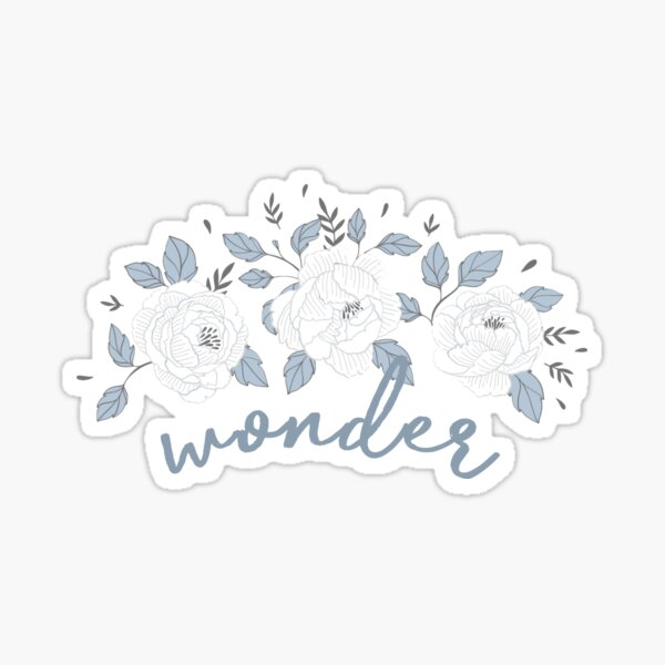 Wonder Shawn Mendes Sticker