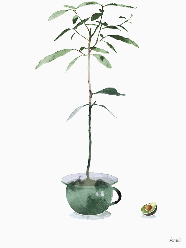 Avocado Tree by Arell