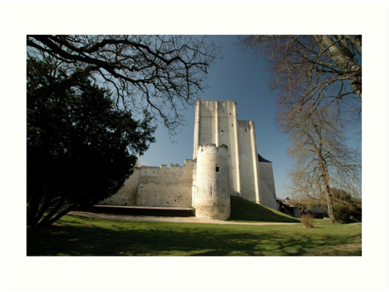 Donjon, Medieval City, Loches, France, Europe 2012 by muz2142
