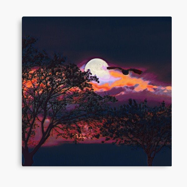 Full Moon I Canvas Print