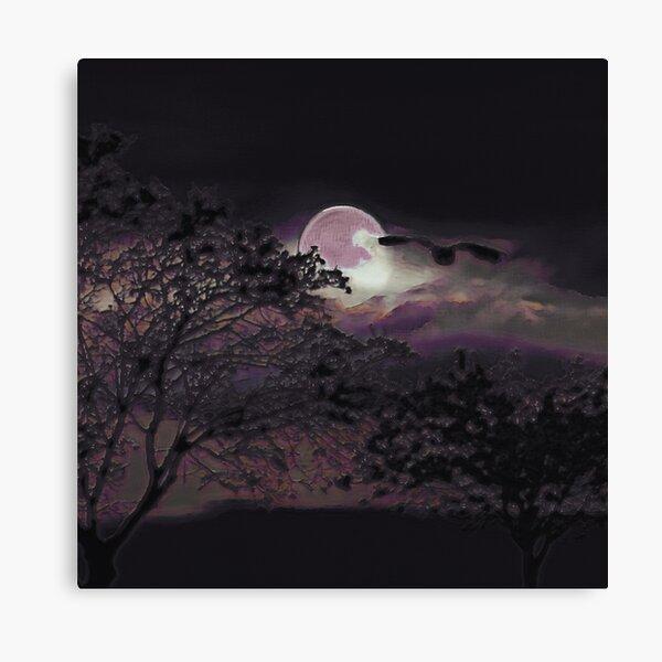 Full Moon III Canvas Print