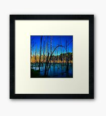 Blue sky, water and dead trees Framed Print