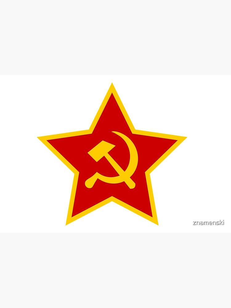 Soviet Red Army Hammer and Sickle by znamenski
