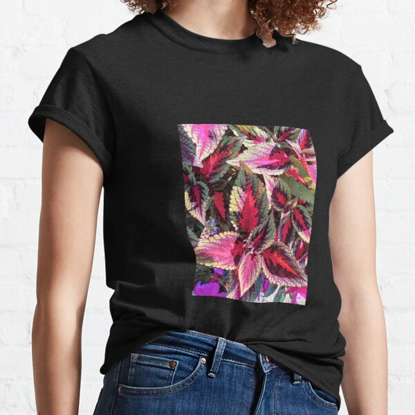 Coleus Leaves plant red and green leaves Classic T-Shirt