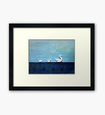 3cm Family Swim Framed Print