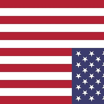 U.S. flag - UPSIDE DOWN & MIRRORED by Stephanizzle