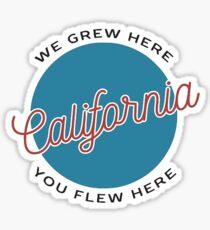 BRANDY MELVILLE CALIFORNIA Sticker