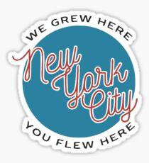 BRANDY MELVILLE NYC Sticker