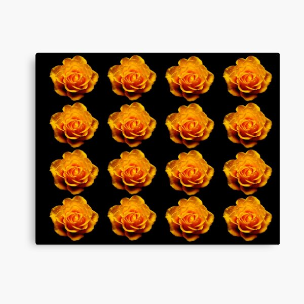 Glimmery Yellow Roses On Black Canvas Print