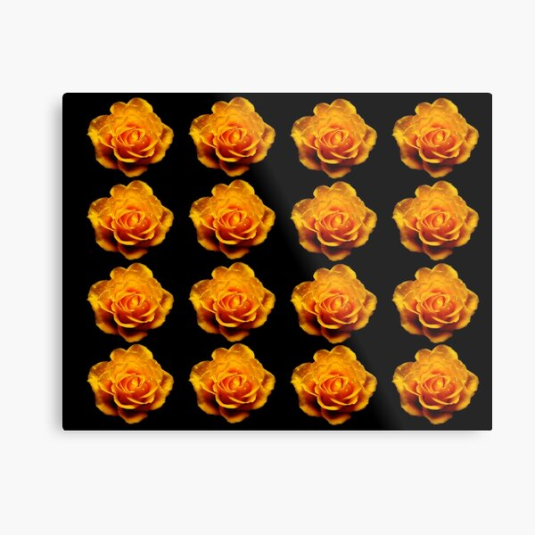 Glimmery Yellow Roses On Black Metal Print