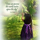 A Child in Nature by Charmiene Maxwell-Batten