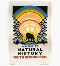 Vintage poster - South Kensington Poster