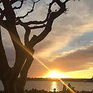 Sunny horizon by Kimberly Palmer