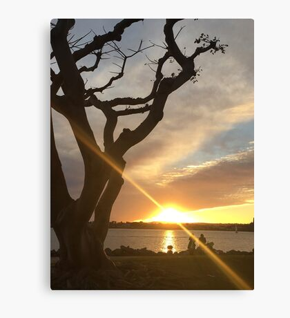 Sunny horizon Canvas Print