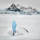 Iceberg Lagoon by Sheldon Pettit