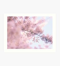 Lovely Light Pink Ethereal Glowing Cherry Blossoms Art Print
