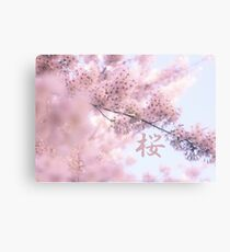 Lovely Light Pink Ethereal Glowing Cherry Blossoms Canvas Print