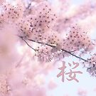 Lovely Light Pink Ethereal Glowing Cherry Blossoms by Beverly Claire Kaiya