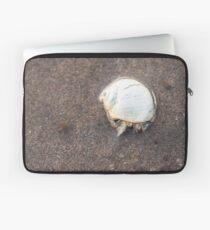 Entzückende Einsiedlerkrebs mit weißer Muschel Laptoptasche