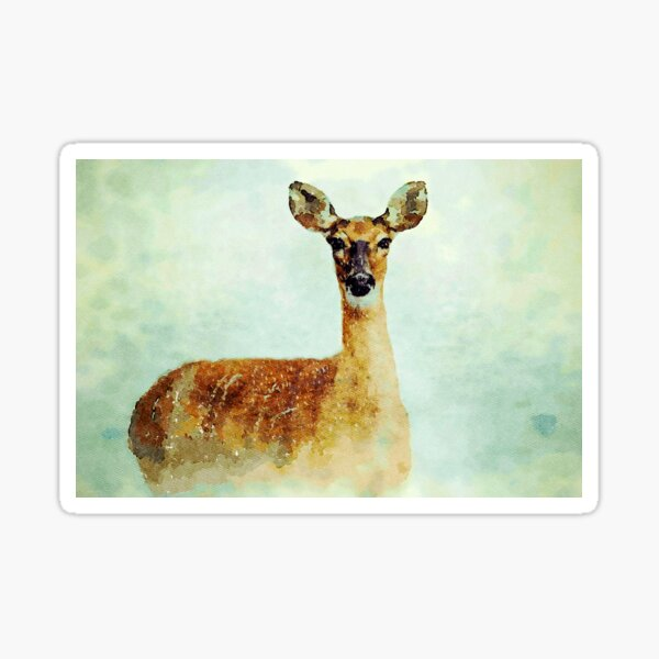 Deer Sticker