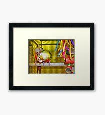 Loving Birds Framed Print