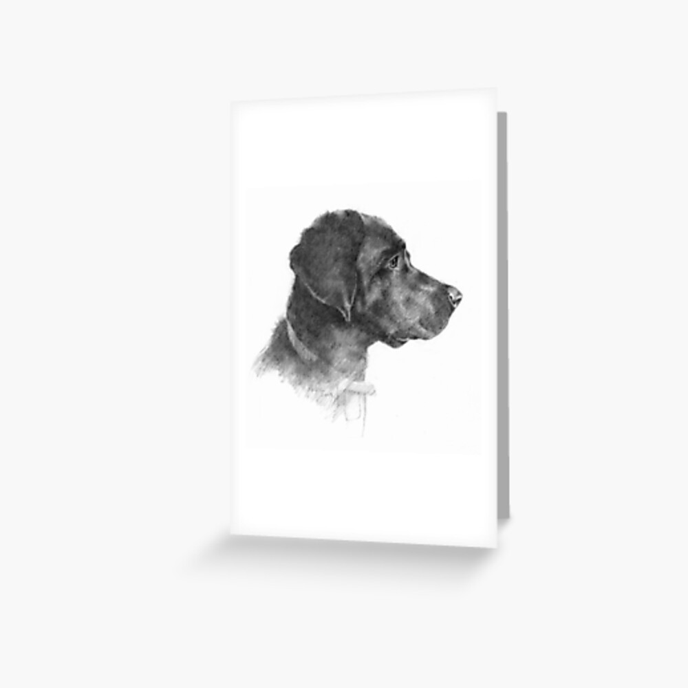 """Pencil Drawing of Tara, a Black Labrador"" Greeting Card ..."