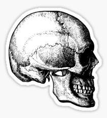 skull (4) Sticker