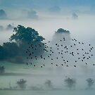 Cumbria dawn 2 by Gary Power