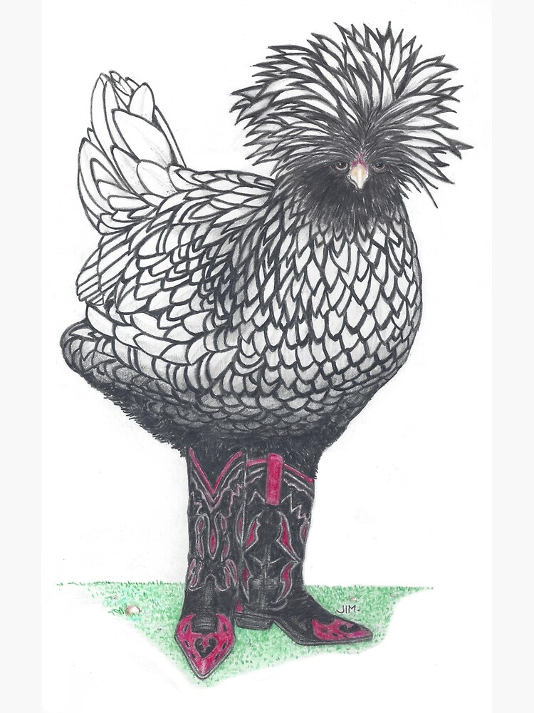 Silver Polish chicken in cowboy boots by JimsBirds