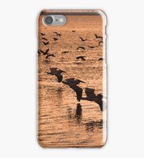 BIRD STAMPEDE iPhone Case/Skin