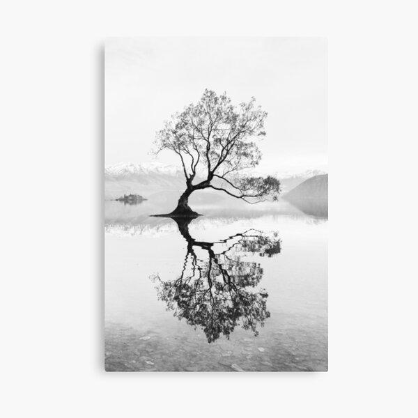 Wanaka Tree New Zealand Landscape Black And White Canvas Print