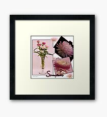 Photo Collage Of Strawflowers Framed Print