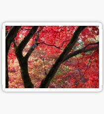 Maples Sticker