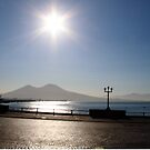 Mount Vesuvius by Anthony Ogle