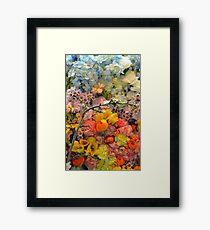 Colorful spring blossoms Framed Print