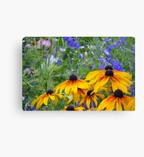 Yellow rudbeckia flowers Canvas Print