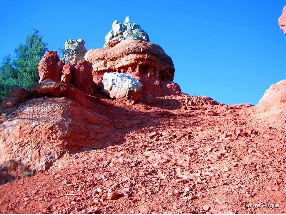 Red Rock Canyon Hoodoo, Utah, May 2008 by Laura Puglia